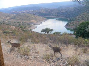 Manifiesto por un acuerdo que proteja los parques nacionales